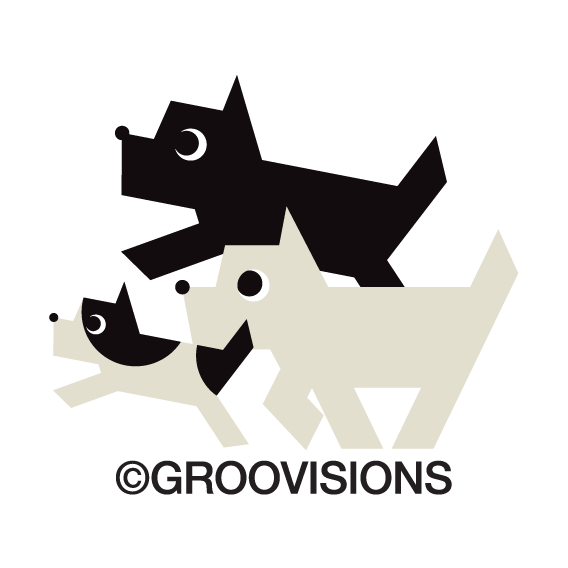 Description Groovisions